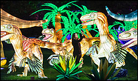 BNPS.co.uk (01202 558833)<br /> Pic: PhilYeomans/BNPS<br /> <br /> Snap happy - Life size Velociraptor's.<br /> <br /> Jurassic Lark - Huge Dino's, an Egyptian pyramid, medieval knights, coral reef's and even a huge serpent are to be found at the stunning 'Festival of Light' at Longleat House this Xmas.<br /> <br /> The English country estate is transformed with 800 illuminated lanterns to take visitors on a magical journey around the world and under the sea.<br /> <br /> Staff at the popular park attraction say this is their most ambitious event yet, with a team of highly-skilled Chinese artists spending more than 7,000 hours to complete the different stories for A Fantastic Voyage.<br /> <br /> The displays have used more than 25 miles of silk and LED lighting strips, as well as more than 60,000 light bulbs.