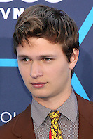 Ansel Elgort<br />