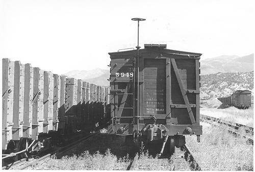 End view of D&amp;RGW stock car #5948 in Salida yard.  Several unidentified gondolas are on an adjacent track.<br /> D&amp;RGW  Salida, CO  Taken by Horan, John F. - 7/28/1954