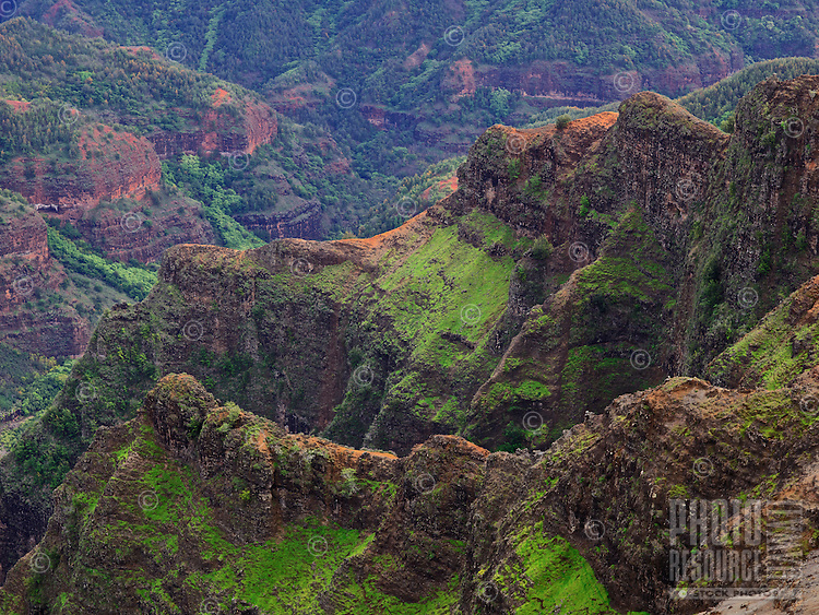 The lush red cliffs of Waimea Canyon on Kaua'i.