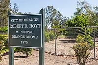 Robert D. Hoyt Municipal Orange Grove
