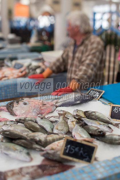 Europe/France/Provence-Alpes-Côte d'Azur/Alpes-Maritimes/Nice: Poutine sur le Marché au poisson, spécialité niçoise //   Europe, France, Provence-Alpes-Côte d'Azur, Alpes-Maritimes, Nice: Poutine, Gianchetti  on the Fish Market, Niçoise specialty