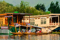 Shikaras and houseboats, Dal Lake, Srinagar, Kashmir, Jammu and Kashmir State; India.