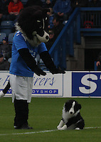 Queen of the South v Livingston 291011