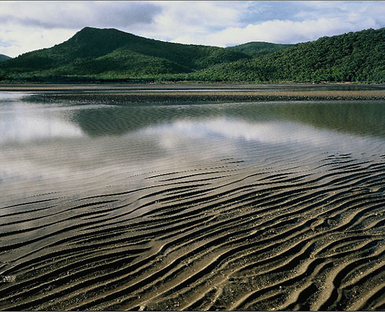 Sand Ridges,<br /> Low Tide, Conway Beach,<br /> NQ