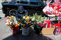 NEW YORK, NY - MAY 10: A lady wearing a face mask organizes the flowers she has for sale on Mother's Day on May 10, 2020 in Queens, New York. COVID-19 has spread to most countries in the world, claiming more than 283,000 lives and more than 4.1 million people infected, Queens has been one of the places most affected by the Coronavirus. (Photo by Pablo Monsalve / VIEWpress via Getty Images)