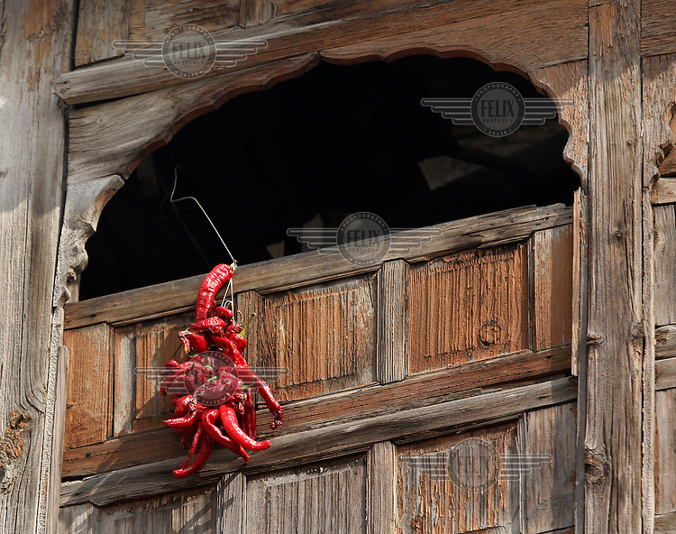 Chilli peppers hang to dry outside an old wooden building in Srinagar, Kashmir,India. © Fredrik Naumann/Felix Features