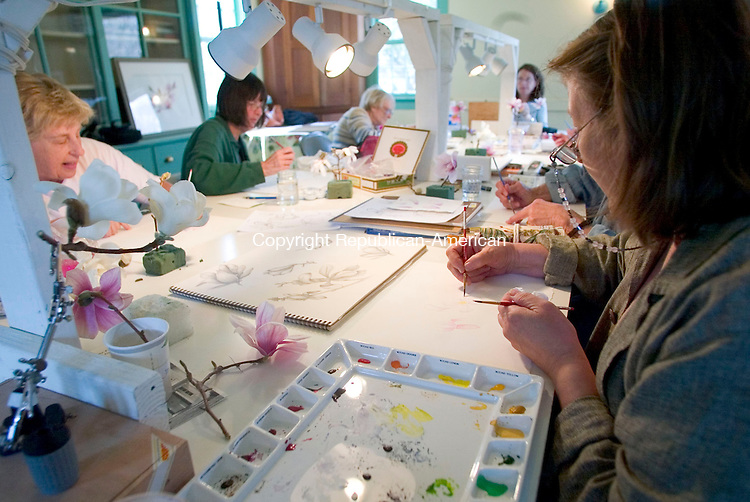 BETHLEHEM, CT- 24 APRIL 07- 042407JT18-<br /> Lorraine Evans of Bethlehem, at right, and Marilyn Harlow of Thomaston at left during a watercolor workshop on magnolias taught by Betsy Rogers-Knox at the Bellamy-Ferriday House in Bethlehem on Tuesday, April 24. <br /> Josalee Thrift Republican-American
