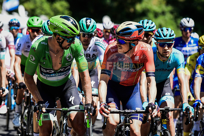 The peloton including Green Jersey Peter Sagan (SVK) Bora-Hansgrohe chatting with Rohan Dennis (AUS) Bahrain-Merida during Stage 10 of the 2019 Tour de France running 217.5km from Saint-Flour to Albi, France. 15th July 2019.<br /> Picture: ASO/Pauline Ballet | Cyclefile<br /> All photos usage must carry mandatory copyright credit (© Cyclefile | ASO/Pauline Ballet)