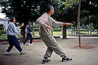Small Group Of Men Practices Tai Chi At Golden Gate Park; San Francisco, C