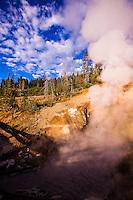Steaming Mud