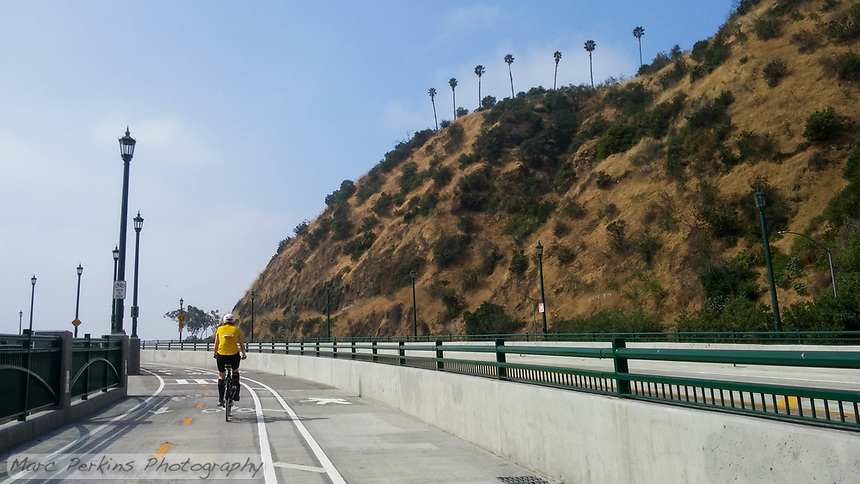 Michelle climbs the Los Angeles River Greenway Trail's Figueroa Street hill on her Terry Burlington city bike during the 2017 (17th annual) Los Angeles River Ride.  The trail's lovely class I bike path is beautiful in this portion: completely separated from the cars by a concrete wall, the trail has separate sections for pedestrians and cyclists.   The hillside just screams California: brown grass, green shrubs, and palm trees on top.