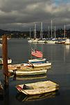 Sausalito, CA.   Marinas by Frank Balthis