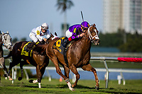 HALLANDALE BEACH, FL - JANUARY 27: Rainbow Heir with Irad Ortiz jr. up wins the Gulfstream Park Turf Sprint at Gulfstream Park Race Track on January 27, 2018 in Hallandale Beach, Florida. (Photo by Alex Evers/Eclipse Sportswire/Getty Images)