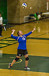 1 November 2015: Yeshiva University Maccabee Middle Blocker Marissa Almoslino, a Junior from Seattle, WA, serves to the SUNY College at Old Westbury Panthers at SUNY Old Westbury in Old Westbury, NY. The Panthers edged out the Maccabees 3-2 in NCAA women's volleyball, Skyline Conference play. Mandatory Credit: Ed Wolfstein Photo *** RAW (NEF) Image File Available ***