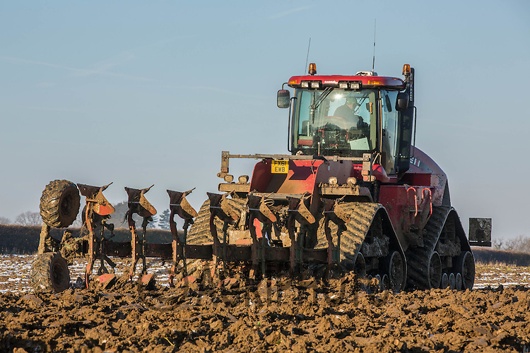 Case Quad Trac 450 ploughing sugar beet land on a frosty morning<br /> Picture Tim Scrivener 07850 303986