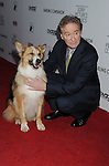 HOLLYWOOD, CA - APRIL 17: Kasey the dog and Kevin Kline attend the Los Angeles premiere of 'Darling Companion' held at the American Cinematheque's Egyptian Theatre on April 17, 2012 in Hollywood, California.