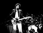 Bob Dylan.© Chris Walter.