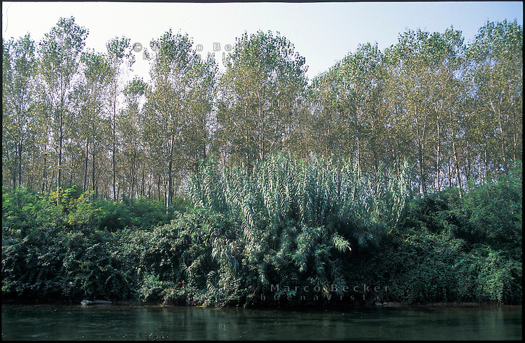 Robecco Sul Naviglio (Milan), canal Naviglio Grande