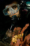 A diver and Painted Frogfish, Antennarius pictus, Lembeh Strait, Bitung, Manado, North Sulawesi, Indonesia, Pacific Ocean