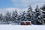 Snow covered trees with a rustic fence and tractor