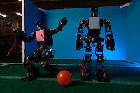 Robots that are able to play football at the Department of Advanced Robotics at the Chiba Institute of Technology, Japan.