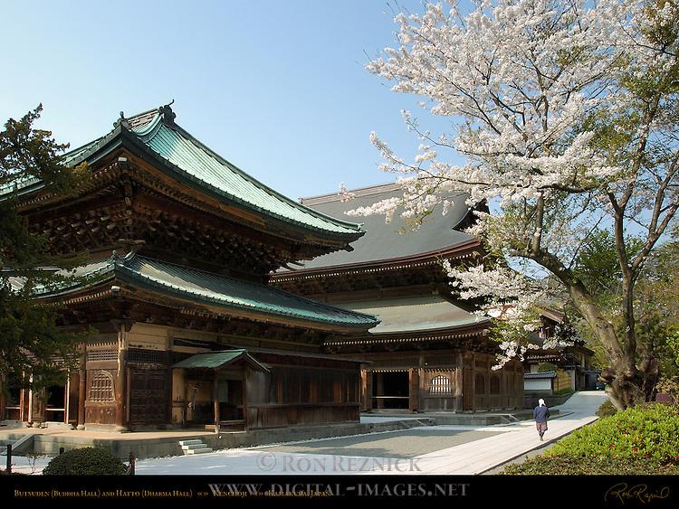 Butsuden Buddha Hall and Hatto Dharma Hall, Kenchoji Zen Temple, Kamakura, Japan