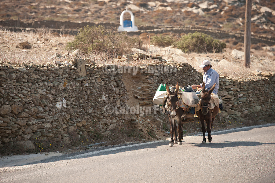 The donkey herder transports water to villagers along the road, Folegandros, Cyclades, Greece