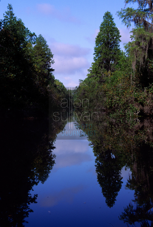 A canal in Georgia's Okefenokee Swamp, 1993.
