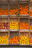 A fruit and vegetable shop displaying products in wooden crates on the street: tomatoes, many types of oranges, lemons, apples, bananas and more Montevideo, Uruguay, South America