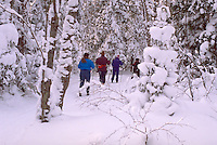 Friends age 40 cross country skiing on winter weekend getaway. Bessemer Michigan USA
