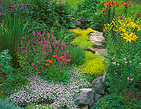 Vashon Island, WA<br /> A garden bed filled with flowers and ground cover in bloom in early summer