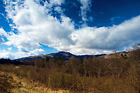 Ben Ledi from Coilhallan Wood near Callander, Loch Lomond and the Trossachs National Park, Stirlingshire