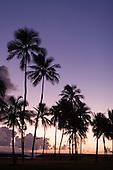 Nov. 04, 2006; Honolulu, HI, USA;  Hawaii..Photo credit: Darrell Miho.
