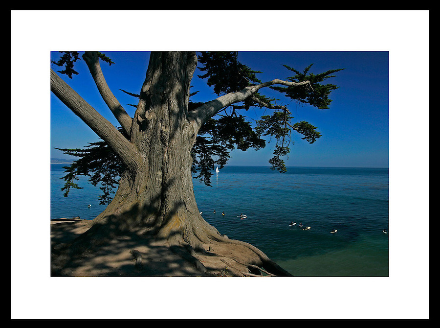 Santa Cruz, California. © Andrew Shurtleff
