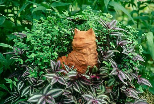 Red clay kitten planter in shade garden surrounded by Spiderwort, Zebrina pendula, foliage plants