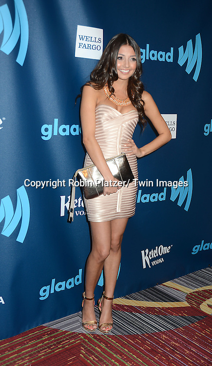Christine Prosperi of Degrassi attends the 24th Annual GLAAD Media Awards on March 16, 2013 at The Marriott Marquis in New York City.