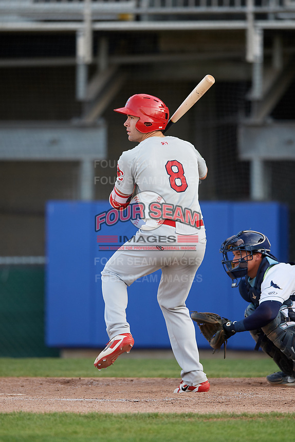Johnson City Cardinals shortstop Michael Perri (8) at bat during the first game of a doubleheader against the Princeton Rays on August 17, 2018 at Hunnicutt Field in Princeton, Virginia.  Johnson City defeated Princeton 6-4.  (Mike Janes/Four Seam Images)