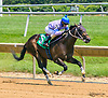 Arrivano winning at Delaware Park on 7/17/17