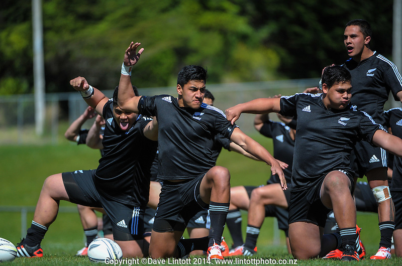NZ captain Rieko Ioane leads the haka during the rugby union match between NZ Schools and Fiji Schools at Porirua Park, Porirua, Wellington, New Zealand on Tuesday, 30 September 2014. Photo: Dave Lintott / lintottphoto.co.nz