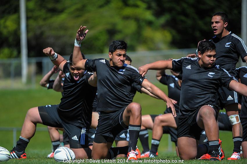 NZ captain Rieko Ioane leads the haka during the rugby union match between NZ Schools and Fiji Schools at Porirua Park, Porirua, Wellington, New Zealand on Tuesday, 30 September 2014. Photo: Dave Lintott / lintottphoto.co.nz
