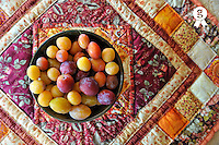 Variety of plums in bowl on colorful tablecloth (Licence this image exclusively with Getty: http://www.gettyimages.com/detail/106882009 )