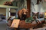 Rancho Del oso, Nature Center