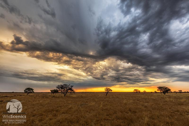 Wild stormy sky at sunset over a kalahari pan.