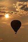 Hot Air Balloons sail over Napa Valley vineyards.