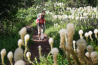Christine Marozick of Bozeman, Montana, walks through a patch of bear grass near Pendant Pass in the Bob Marshall Wilderness.