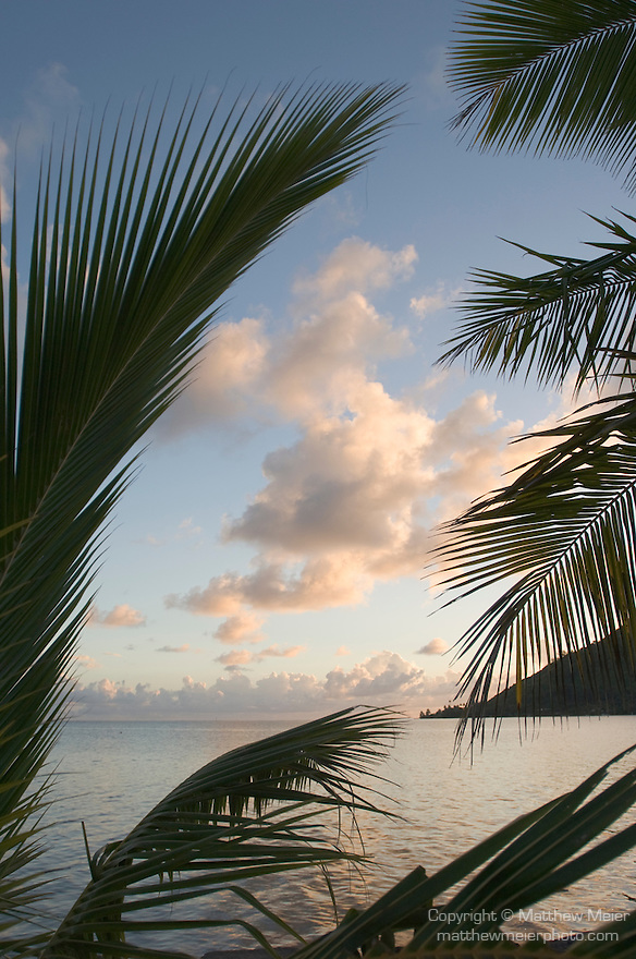 Cook's Bay, Moorea, French Polynesia; sunrise views framed by palm fronds, from Gump Research Station , Copyright © Matthew Meier, matthewmeierphoto.com All Rights Reserved