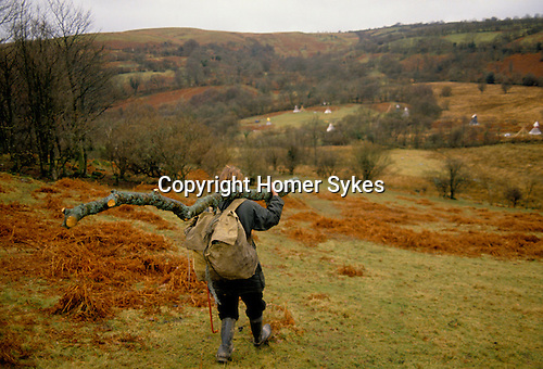 TeePee valley nr Llandeilo Wales. 1980s. Middle class drop out collecting timber. 120 people live here through out the year.<br /> Rev. Rick Mayes