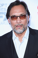 HOLLYWOOD, LOS ANGELES, CA, USA - SEPTEMBER 06: Jimmy Smits arrives at the Los Angeles Premiere Of FX's 'Sons Of Anarchy' Season 7 held at the TCL Chinese Theatre on September 6, 2014 in Hollywood, Los Angeles, California, United States. (Photo by David Acosta/Celebrity Monitor)