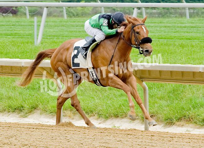 Jungle Princess winning at Delaware Park on 5/21/12